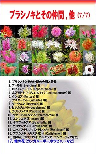 Callistemon and its groups other flowers: Kangaroo-pow purple pea Hovea etc (engeikankeisyo)...