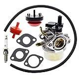 Carbhub 801396 Carburetor for Briggs & Stratton 801233 801255 Snowblower Thrower Toro CCR2400 CCR2450 CCR2500 CCR3000 CCR3600 CCR3650 Snowblower Powerclear 084132 084133 084233 084332 084333 Engines