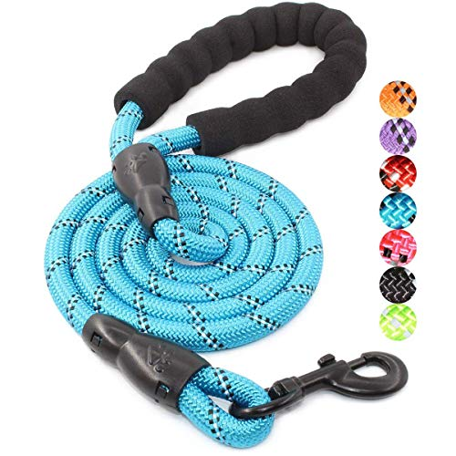BAAPET 5 FT Strong Dog Leash with Comfortable Padded Handle and Highly Reflective Threads for Small Medium and Large Dogs (1/2'', Blue)