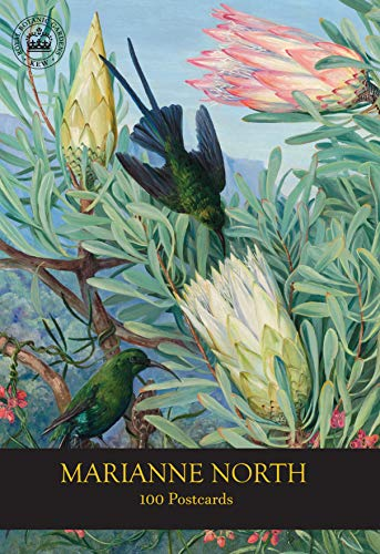 Compare Textbook Prices for Marianne North 100 Postcards 1 Edition ISBN 9781842466841 by Royal Botanic Gardens  Kew