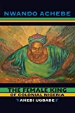 The Female King of Colonial Nigeria: Ahebi Ugbabe - Nwando Achebe