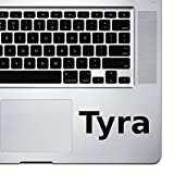 (2x) StickAny Palm Series Tyra Sticker for Macbook Pro, Chromebook, and Laptops (Black)