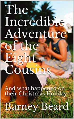 Silver | The Incredible Adventure of the Eight Cousins by Barney Beard