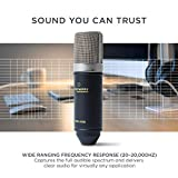 IMG-3 marantz professional mpm 1000 microfono