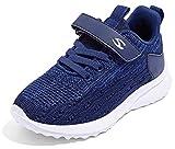Gaatpot Niñas Zapatillas Deportivas Niño Zapatillas de Running Casual Transpirables Calzado de Running Correr para Exterior Interior Azul 31 EU