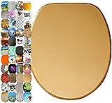 WC Sitz mit Absenkautomatik, hochwertige Oberfläche, einfache Montage, stabile Scharniere, Glitzer Gold