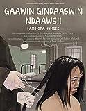 Gaawin Gindaaswin Ndaawsii/I Am Not A Number - Jenny Kay Dupuis