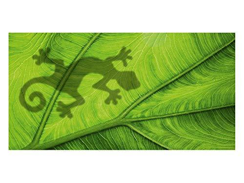 GRAZDesign Sichtschutzfolie Gecko/Blatt, Glasdekorfolie zur Deko und Sichtschutz, Blickdichte Fensterfolie, 100x57cm