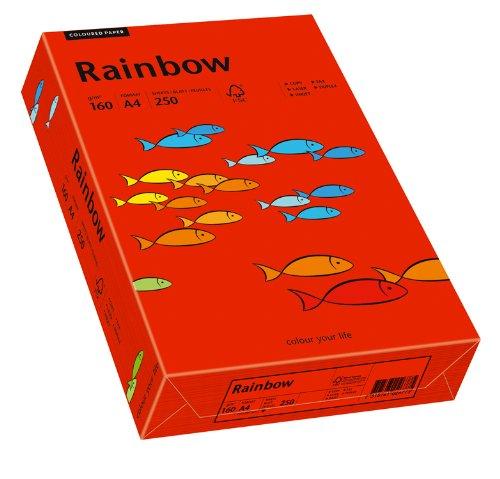 Papyrus 88042483 Drucker-/Kopierpapier bunt, Bastelpapier Rainbow: 160 g/m², A4, 250 Blatt, Matt, intensivrot