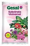 GESAL Substrato Universal, Óptimo Crecimiento de la Planta, con turba, 5L, 34x6x21 cm, 2635004011