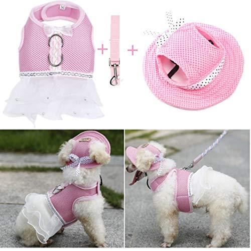 AMURAO Sommer Haustier Hund Kleid niedliche Prinzessin Lace Puppy Rock Mesh Hochzeit Haustiere Kleidung Heimtierbedarf Bekleidung