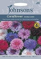 JOFL 英国ジョンソンシード Cornflower Double Mxed コーンフラワー・ダブル・ミックス