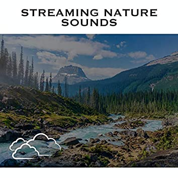 Streaming Nature Sounds