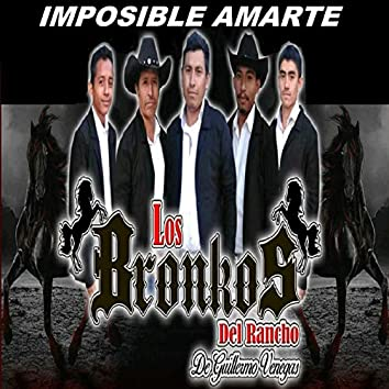 Imposible Amarte