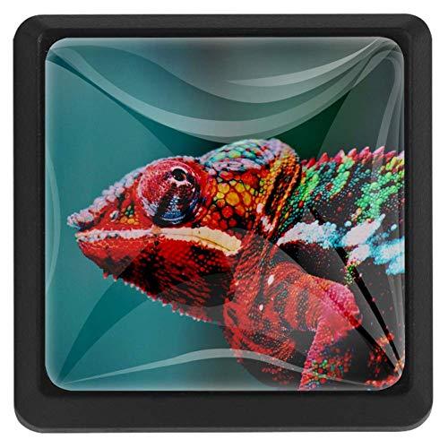 Vierkante lade knoppen, 3 Packs 37mm Trekken Handvatten met Rode Panda Knuffel, Gebruikt voor Slaapkamer Dresser Deur Kast Keuken Modern design 37x25x17mm/1.45x0.98x0.66in Kleurrijke kameleon