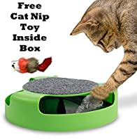 Gizmo Pet Product's Cat Mice Toy for Kittens Catch The Mouse Motion Cat Toy Sold by Gizmo Pet Products Most Interactive Toy for Cats Incredibly Fun to Play with & Amusing to Watch Get It Now