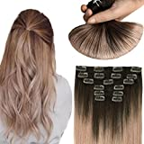 HUAYI Brown To Milky Lavender/Pink Mauve Ombre 120g 14inch 7Pcs Clip In Hair Extensions Human Hair Soft Thick End Tangle Free Durable Silky Straight Balayage Hair Extensions (2TG#14)