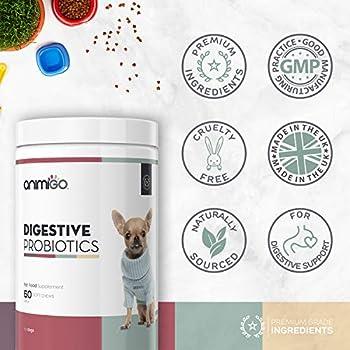 PROBIOTIQUE Flore INTESTINALE pour LA Digestion du Chien - Complément Alimentaire Naturel pour Favoriser Le Système Immunitaire et la Flore Intestinale Dont Les Enzymes Digestives - 60 Gélules