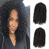 6Small Bundles/Lot 8 Inch Short Marlybob Crochet Hair Curly Crochet Braids Hair Afro Kinky Curly Synthetic Hair Extensions (8 inch, Black 6 Bundles Marlyb)