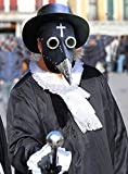 Plague Doctor Mask Halloween Scary Mask for Kids/Women/Adults Christmas, Easter,Carnival,Masquerade Costume Decoration Props (Black + silver)