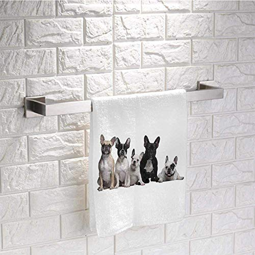 DayDayFun Bulldog Small Towel Group of Young French Bulldogs with Adorable Expressions Animal Lover Photo Towels Rack Bathroom Sets Size 14'x28' Black White Beige