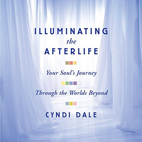 Couverture de Illuminating the Afterlife