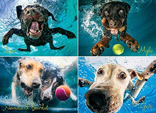 Willow Creek Press - 1000 Piece Puzzles for Adults - Underwater Dogs Jigsaw Puzzles Series -Splash