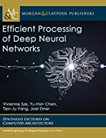 Efficient Processing of Deep Neural Networks
