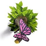 Mariposa Rosa 3D Aplique LED