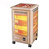 DYCLE Patio Heaters Birdcage Electric heater can barbecue,With 2 temperatures 1200W/2000W,Outdoor garden courtyard heater Barbecue grill