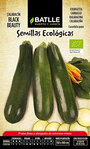 Semillas Ecológicas Hortícolas - Calabacín Bellezza negra - ECO - Batlle
