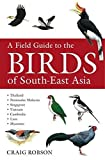 Buy A Field Guide to the Birds of South East Asia from Amazon