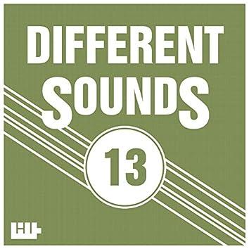 Different Sounds, Vol.13