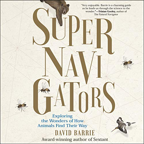 Supernavigators audiobook cover art