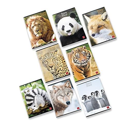 Pigna ANIMAL 02307650A Maxi Quaderni A4 0A Quadretti 0A Righe Prima/Seconda Elementare, Confezione da 10 Pezzi