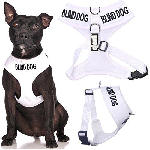 Blind Dog (Hund Hat Limited/keine Sight) weiß Farbe Kodiert non-pull Vorder- und Rückseite D-Ring gepolstert und wasserdicht Weste Hundegeschirr verhindert Unfälle durch vorwarnen anderer Hunde in Advance (Medium Hals bis zu 40 cm Brust 48-72cm)