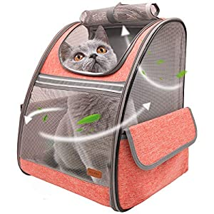 BELPRO Cat Backpack Carrier, Small Pet Dog Backpack Carrier for Small Dogs Puppies with Ventilated Design, Airline Approved, Collapsible | for Travel, Hiking, Outdoor(Orange)