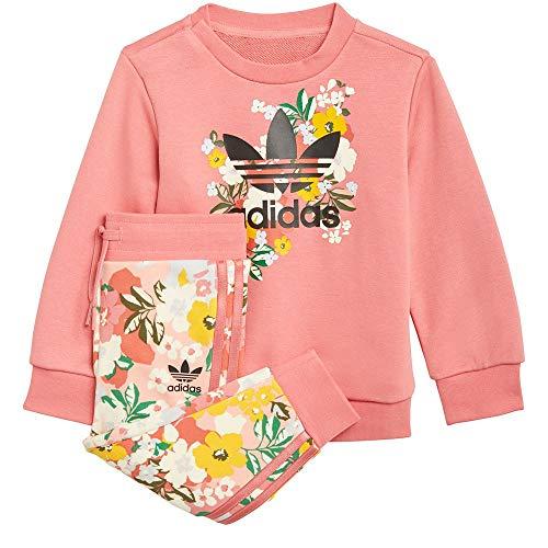 adidas Crew Set Chndal, Top:Hazy Rose/Multicolor/Black Bottom:Trace Pink F17/Multicolor/Hazy Rose S21, 24 Meses para Bebés