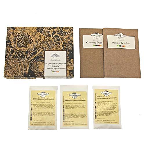 Les 3 S?urs - kit cadeau de graines avec maïs, haricots et courges pour un carré de légumes Milpa traditionnel