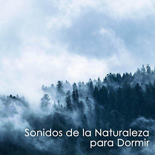 Musica Relajante Voyage & Radio Musica Clasica & Native American Indian Meditation