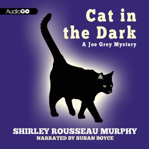 Cat in the Dark cover art