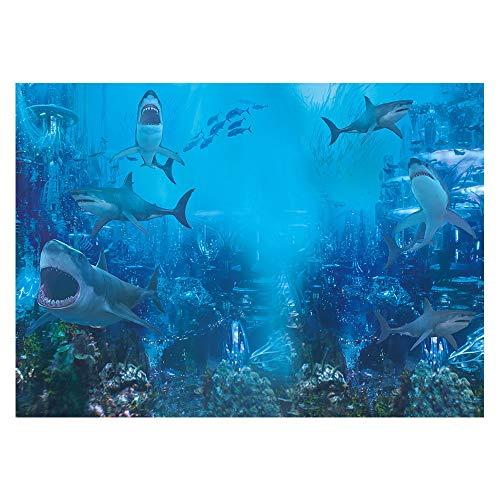 Best Aquarium For Sharks
