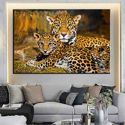 SXXRZA Lienzo de Arte 60x80cm sin Marco Animal Lovely Panther Jaguar Pintura sobre Lienzo Leopardo Cuadros de Pared para habitación de niños Carteles Impresiones decoración del hogar