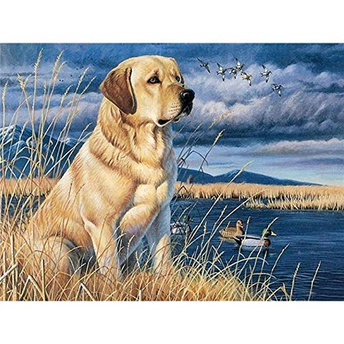 DIY 5D Diamond Painting by Number Kits,Full Round Drill,Diamond Embroidery Paintings Arts Craft for Home Wall Decor Dog 15.7x11.8 in By Bemaystar