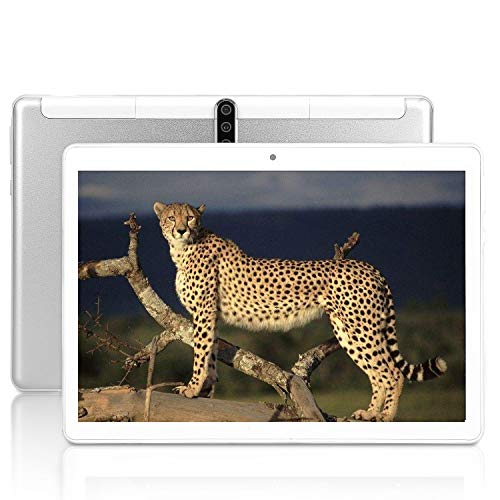Android Tablet PC 10 inch, 5G Wi-Fi, 4GB RAM,64GB ROM, Octa -Core Processor, IPS Display 1200800, Penen Tablets for Kids,3G Phablet with Dual Sim Card Slots, WiFi, Bluetooth, GPS, M3 (Silver)