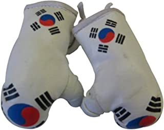 Flag Mini Small Boxing Gloves to Hang Over Car Automobile Mirror – Asia & Africa (3-Pack, Country: Korea)