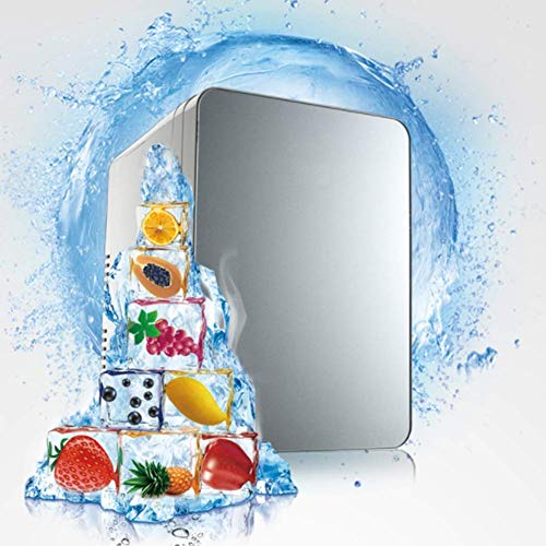 XKCQC Mini Fridge with 10 l car, Cool and Warm Double use, Vehicle Voltage 12V. Travel, self-Drive Tour, Camping, Picnic The Best Choice for The Summer