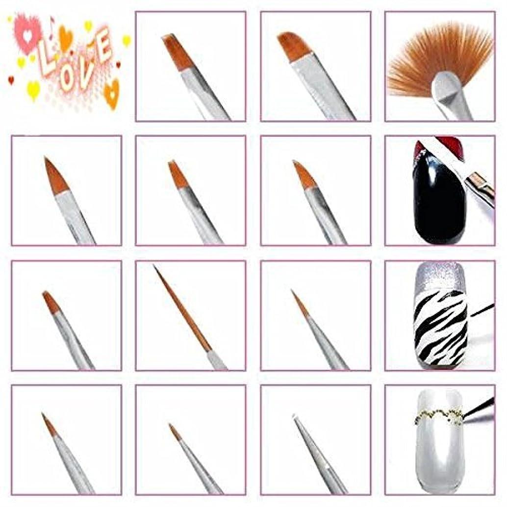 ミット整然とした補うRaiFu ネイルアートデザインキット モンスタープロ 美容 化粧品 アーティスト 供給 工芸 20PCS