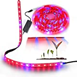AveyLum Plant Grow Light Strip 5050 SMD LED Plant Strip Lights Indoor Growing Lamp 16.4ft Waterproof Flexible Soft Rope Light with 12V Adapter for Greenhouse Hydroponics Flower Seeds(Red Blue 4:1)