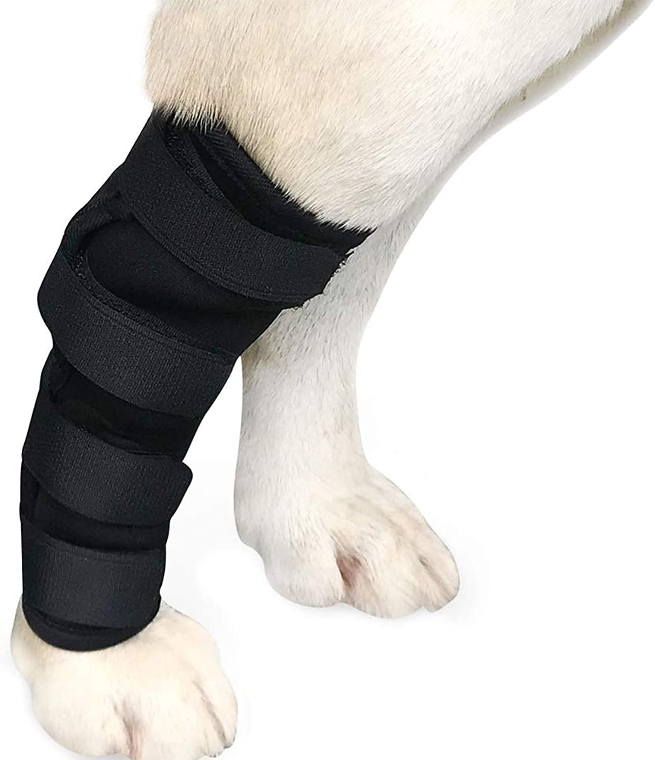 Albabara Dog Leg Brace, Extra Supportive Dog Canine Rear Leg Hock Joint Wrap Predects Wounds as They Heal Compression Brace Heals and Prevents Injuries and Sprains Helps Arthritis
